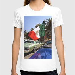Cinco de Mayo at the Park T-shirt