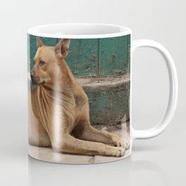 Cuban street dog with balls Coffee Mug