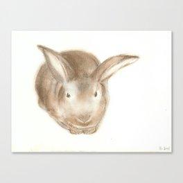 Christopher Rabbit Canvas Print