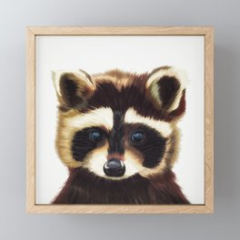 Raccoon Framed Mini Art Print