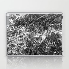 Straw ashes ~hai~ Laptop & iPad Skin