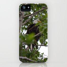 Longmere Lake Baldy! iPhone Case