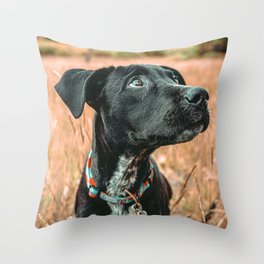 Wheatfield Dog //  Portrait If These Eyes Could Talk .. Stunning Rusty Blues Throw Pillow