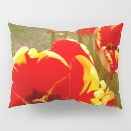 Tulip Gardens Pillow Sham