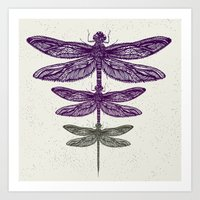 dragonfly Art Prints featuring Dragonfly  by Rskinner1122