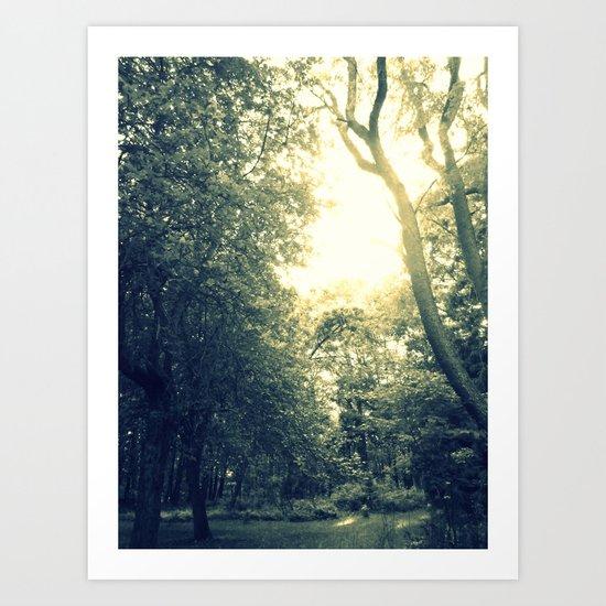 Light Coated Art Print