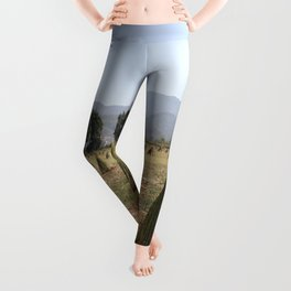 Sesame Crop and Harvest Leggings