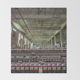 Abandoned Lonaconing Silk Mill Throw Blanket