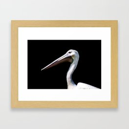 Pelican - Pellicano Framed Art Print