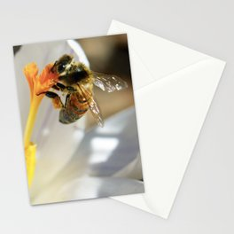 Bee on a Spring Crocus 3 Stationery Cards