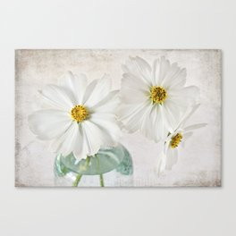 Cosmos in a glass jar Canvas Print