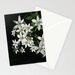 Star of Bethlehem Stationery Cards