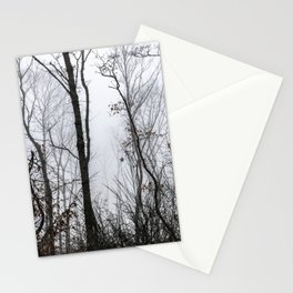 Trees in the fog Stationery Cards