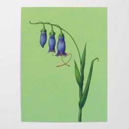 Virgo Flower Poster