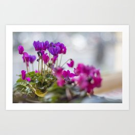 Dots of Purple Art Print