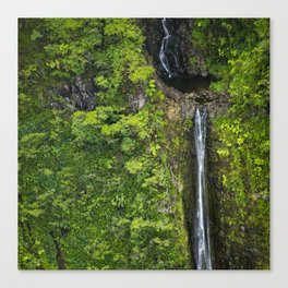 Just Beyond the No Trespassing Sign - Crooked Tropical Waterfall Canvas Print