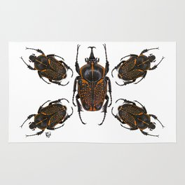 Goliath Flower Beetle Rug