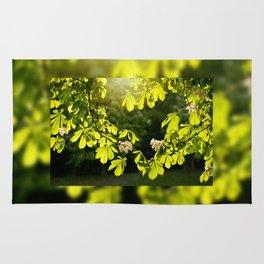 Flowering Aesculus horse chestnut foliage Rug