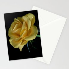 Beautiful Rose Stationery Cards