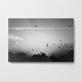 Migrating birds #02 Metal Print