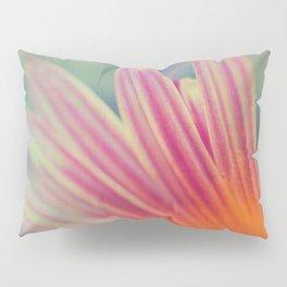 Radiance II Pillow Sham