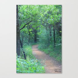 Quiet Escape Canvas Print