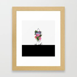 The aggressiveness of roses Framed Art Print