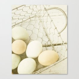 Robin's Egg Farm Canvas Print