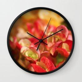 Begonias Wall Clock