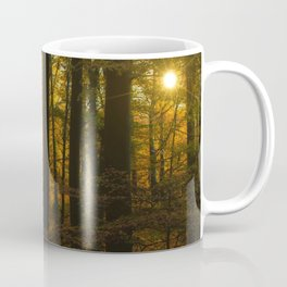 Sunset in the autumn forest Coffee Mug