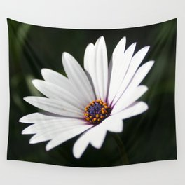 Daisy flower blooming close-up Wall Tapestry
