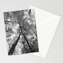 Looking Up in Black and White Stationery Cards