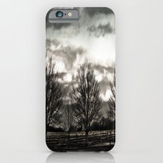 Shady Day Tree's iPhone 6s Slim Case