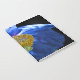 Blue Himalayan Poppy Flower Notebook