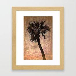 Florida Palm Framed Art Print