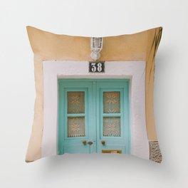 Mint Door Throw Pillow