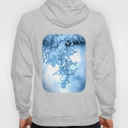 Winter Snowmelt by Murray Bolesta! Hoody