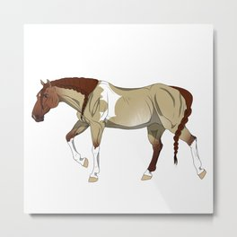 Red Dun Zebra-Striped Sabino Tobiano Paint Horse Metal Print