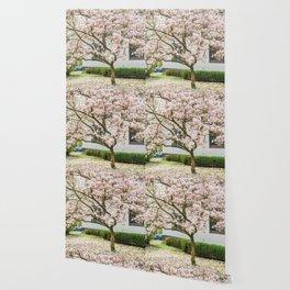 Magnolia Pink Splendor Wallpaper