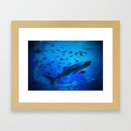 A Whale of a Teacher Framed Art Print