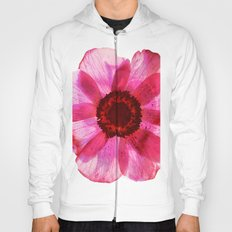 Fragile and beautiful - red anemone in white background Hoody