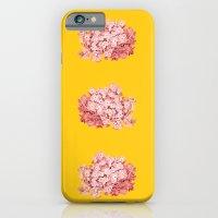 tridrangea Slim Case iPhone 6