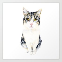 Little cat Harry Art Print