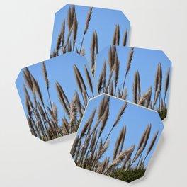 Among the Grasses (Mori Point) Coaster