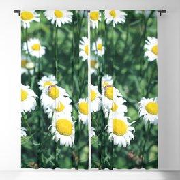 Wild Daisies Blackout Curtain