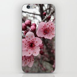 Fall Blossoms iPhone Skin