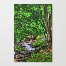 Brook's Blessing Canvas Print