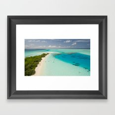 Tropical Delight Framed Art Print