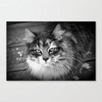 kiki Canvas Prints featuring Kiki by katio111