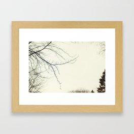 Isles Framed Art Print